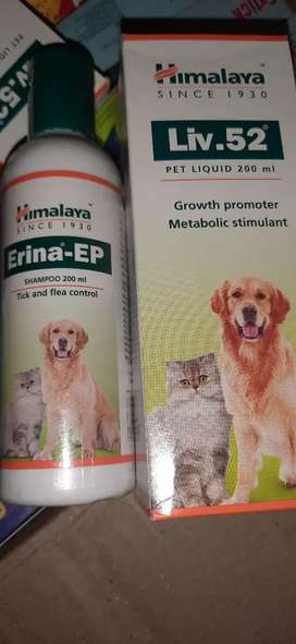 All Items related to pets medicines and supplements are available Here