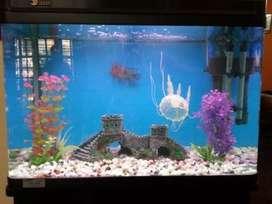 Goldan fish tak