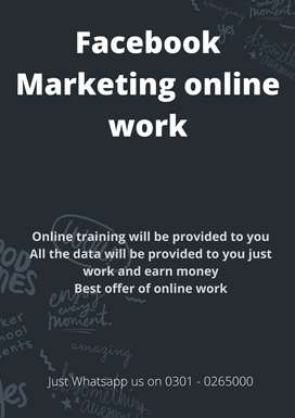 Online job for youngster Face book Marketing online work available