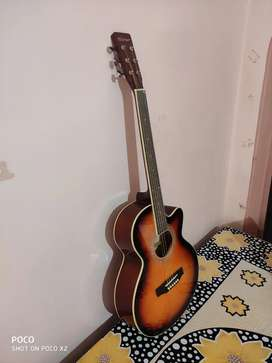 Warner Acoustic guitar
