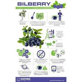 NATURINC, BILBERRY EXTRACT POWDER Organic Buah Bilberi Green Juice