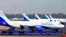 Hiring for ground staff in IndiGo Airlines