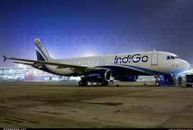 Congrats, Indigo Airline Gives Opportunity For Make future .  Indigo i