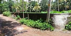 33 cent land for sale Near Manorama Junction Cherthala Alapuzha Dist.