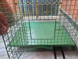 Solid metal cage green colour with tray. Length & Breadth 22 inch