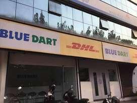 Bluedart process jobs in NCR