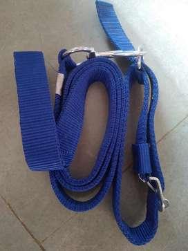 Dog Adult belt