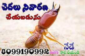 Termites control in warangal