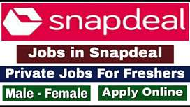 Snapdeal process hiring for Back Office /Data Entry/CCE/BPO/Telecaller