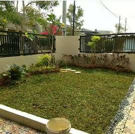Tukang taman minimalis-jual rumput untuk taman