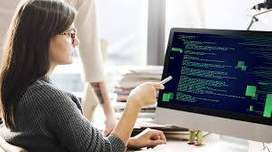 Wanted Urgently Software Developer ~ PHP Developer