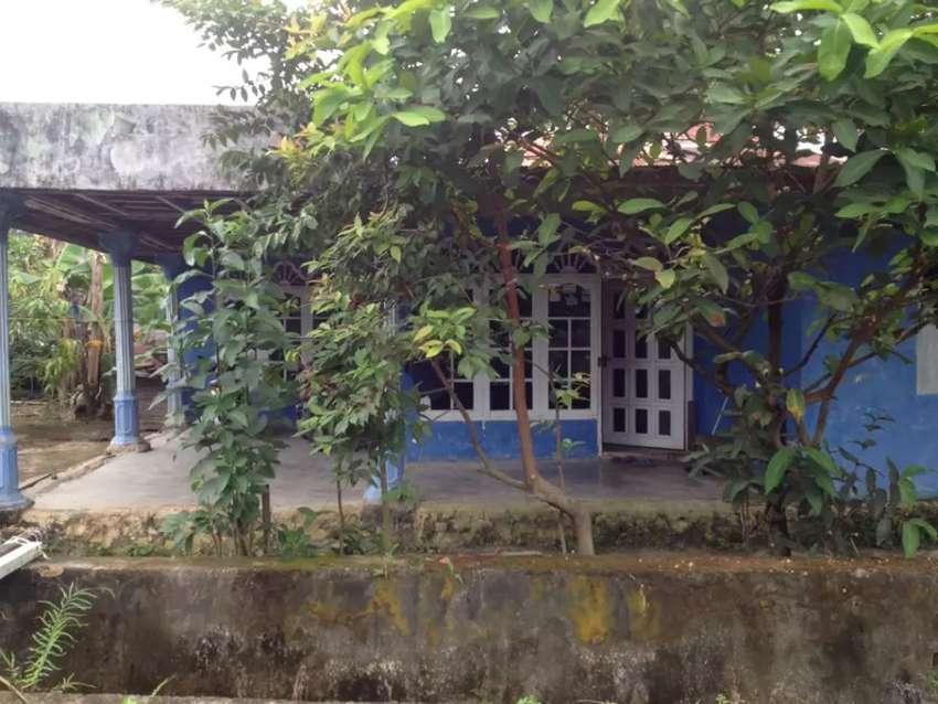 Rumah Kampung Timur 0