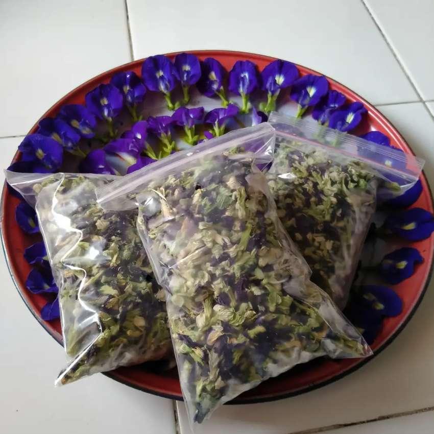 Bunga telang kering organik