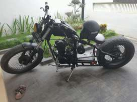 tiger 2008 custom bobber