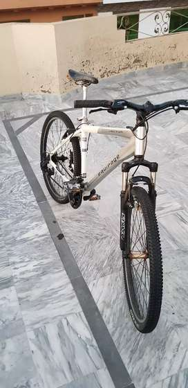 EQUIPAGE VECTOR BICYCLE