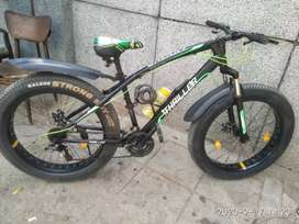 Thriller galaxy fat bike