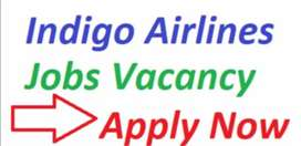 New vacancies for ground staff