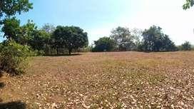 Tanah Pekarangan 3.300 m² Dalam Kota Jepara