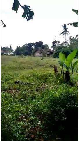 tanah luas 2.5 hektar
