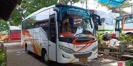 Bus Medium 31sheat