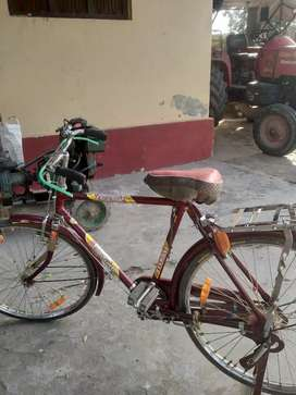 Sultan bycycle
