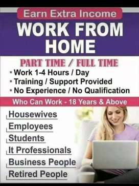 Need team leader fresher or experience people