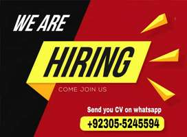 Online Digital Marketer both male and femle required