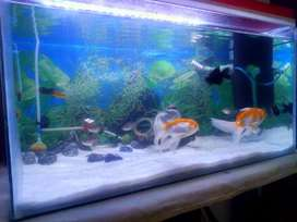 Aquarium 2*1 feet for sell
