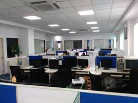 BPO executive (kolkata)