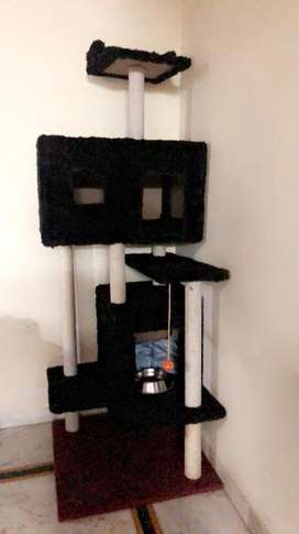 Cat house 7 feet black color