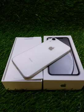 Best iPhone Xr White Indian