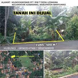 Tanah Strategis Cocok untuk Rumah atau Kebun Bebas Banjir