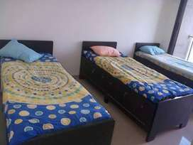 Require Working women or Bachelor females only for sharing room