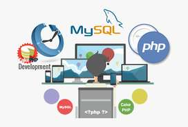 PHP Mysql Developer-4Yrs Exp in Web Developement seeking freelance job