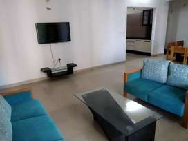 Fully furnished 3bhk flat available on rent at Apollo DB City Campus