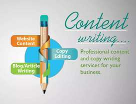 Content writer available