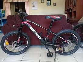 "Sepeda MTB 20"" Genio M346"