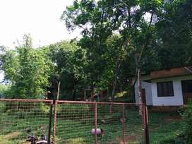10 Acre land including house and Rubber Estat