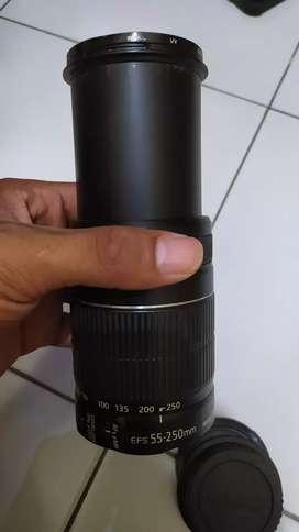 Canon 55-250mm Tele