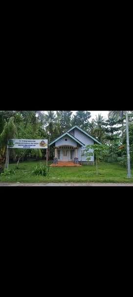 Disewakan tanah beserta rumah di sekotong lombok