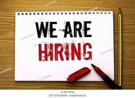 Data Entry For Females /House wife Fresh persons (Home Based Working)