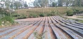 Jual cepat tanah cocok untuk perkebunan, rumah, vila, tempat rekreasi