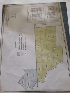 Dijual Kebun Kelapa Sawit seluas 48 Ha umur sawit 3 - 5 Tahun