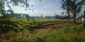 Dijual tanah dengan luas 1300 M² (13 are), harga per are 650 Juta