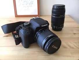 Canon 600D dual lenses camera