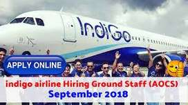 Airline Ticketing Executive / Travel Consultant / Ticketing Executive