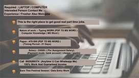 Computer operator job/ pdf to MS- word offline work/home based data.