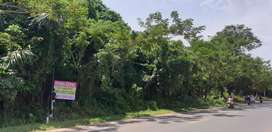 Tanah Strategis dipinggir jalan Pulau Sari tanah laut