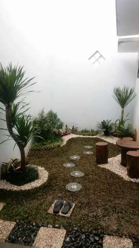 Jasa tukang taman rumah-jual tanaman hias dan rumput taman