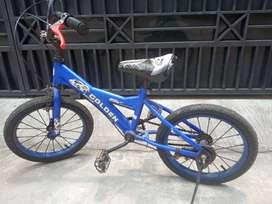 Sepeda Anak Usia 3-6 th